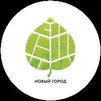 Участники «Нового города» провели рабочую встречу с мэром Великого Новгорода