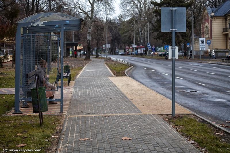 Зимняя поездка в Венгрию. Среда обитания провинциального города N…
