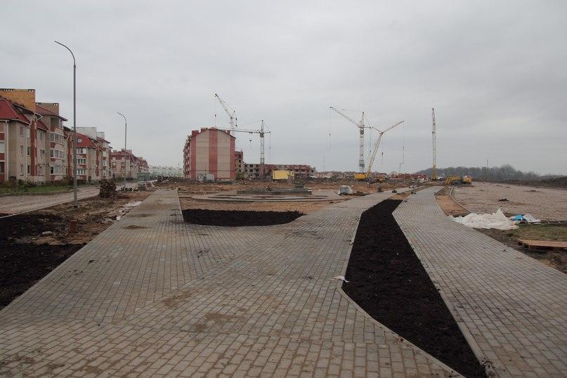 При проектировании велодорожки в Великом Новгороде учтут мировой опыт