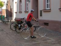 Получен ответ по велодорожке на улице от пр. Мира до ул. 8 Марта