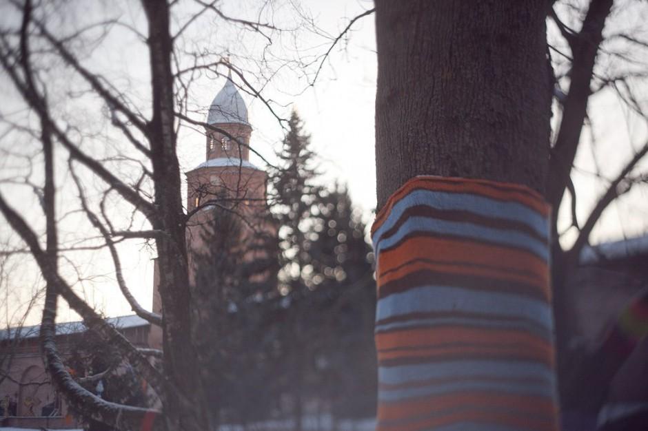 27 декабря новгородские деревья облачатся в яркие вязанные одежды