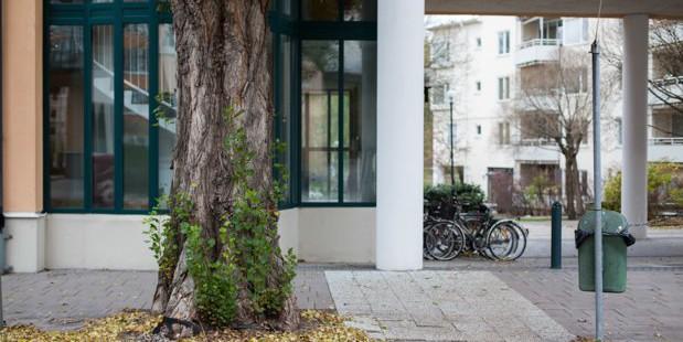 Главный архитектор Стокгольма: «Первые в городе — пешеходы, а не автомобилисты»