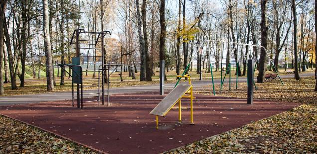 И их осталось двое... Об уличных тренажёрах в кремлёвском парке