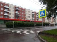 На Большой Московской появился новый пешеходный переход