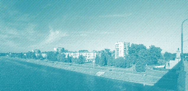 Новгородцы высказали свои пожелания по благоустройству набережной Александра Невского